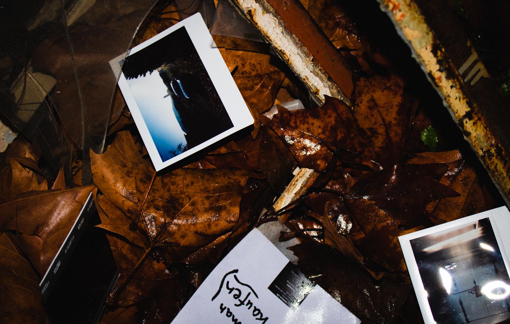 Polaroids im nassen Laub