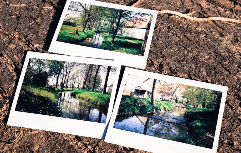 Bild zeigt Polaroids von einem Bach
