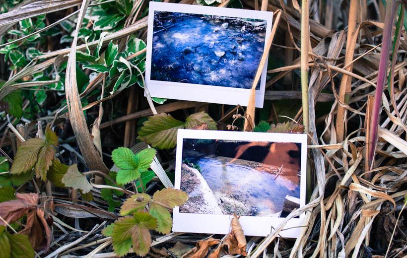 Bild zeigt Polaroids mit Wasserstellen