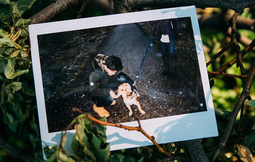 Polaroid auf dem ein Junge einen Hund streichelt.